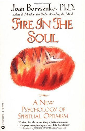 Fire in the Soul A New Psychology of Spiritual Optimism N/A edition cover