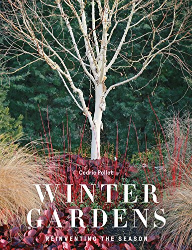 Winter Gardens Reinventing the Season  2017 9780711239159 Front Cover