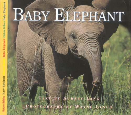 Baby Elephant   2002 9781550417159 Front Cover