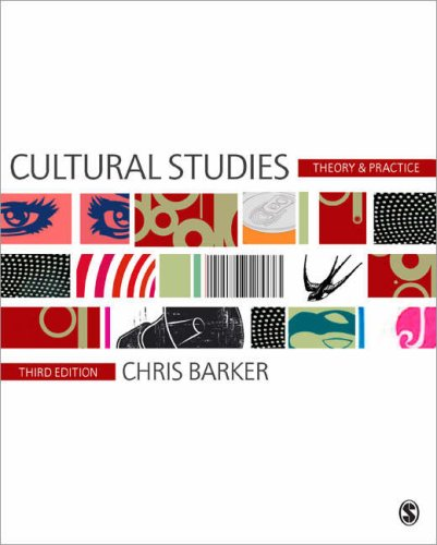 Cultural Studies Theory and Practice 3rd 2008 edition cover
