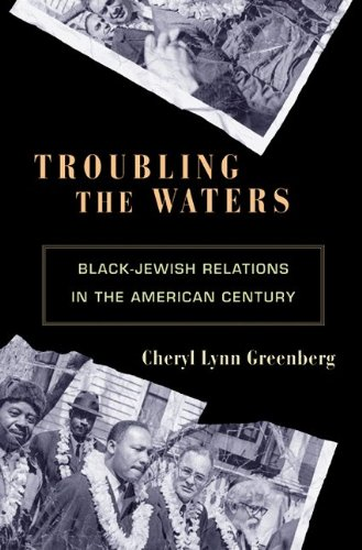 Troubling the Waters Black-Jewish Relations in the American Century  2010 edition cover