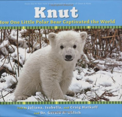 Knut How One Little Polar Bear Captivated the World  2007 9780545047166 Front Cover
