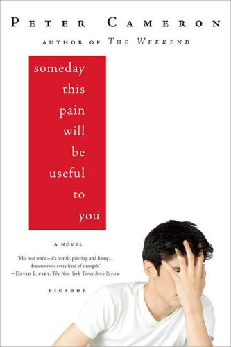 Someday This Pain Will Be Useful to You   2009 edition cover