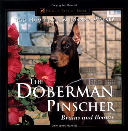 Doberman Pinscher Brains and Beauty  1999 9780876052167 Front Cover