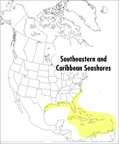 Field Guide to Southeastern and Caribbean Seashores Cape Hatteras to the Gulf Coast, Florida, and the Caribbean  1999 edition cover