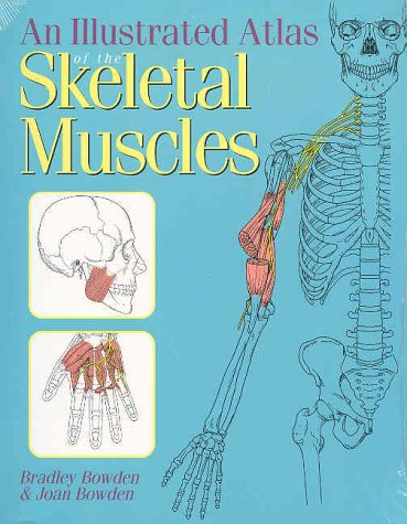 Illustrated Atlas of the Skeletal Muscles 1st 2002 edition cover