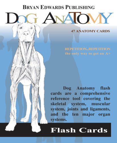 Dog Flash Cards N/A edition cover