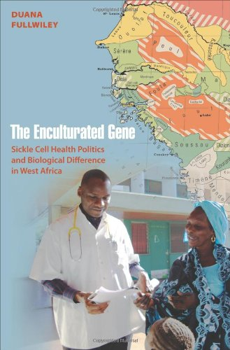Enculturated Gene Sickle Cell Health Politics and Biological Difference in West Africa  2012 edition cover