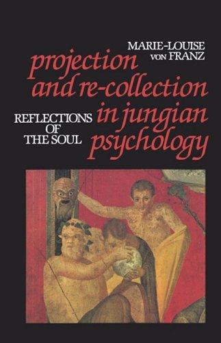 Spiegelungen der Seele: Projektion und Innere Sammlung  N/A edition cover