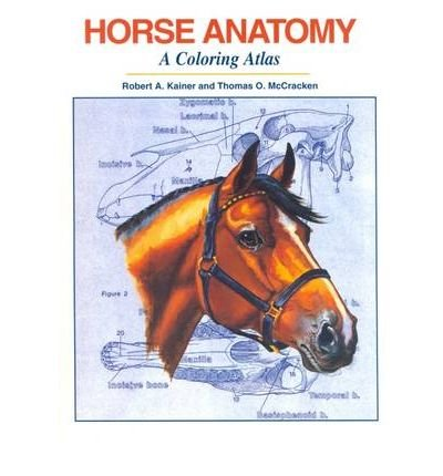 Horse Anatomy : A Coloring Atlas 2nd 1998 (Revised) 9781577790174 Front Cover