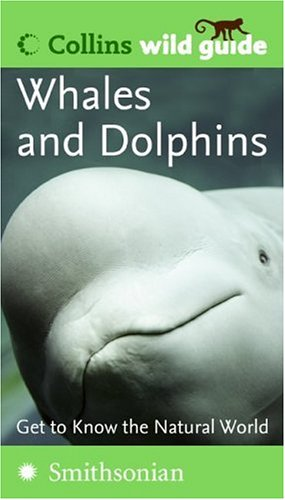Whales and Dolphins  N/A 9780060856175 Front Cover