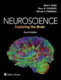 Neuroscience Exploring the Brain 4th 2016 (Revised) 9780781778176 Front Cover