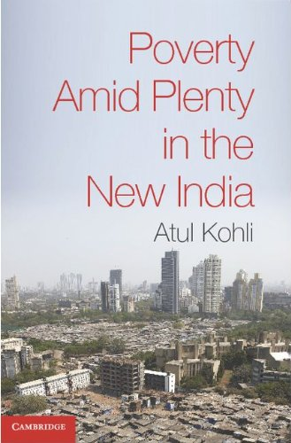 Poverty amid Plenty in the New India   2012 edition cover