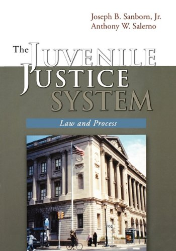 Juvenile Justice System Law and Process N/A edition cover