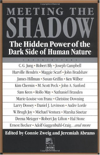 Meeting the Shadow The Hidden Power of the Dark Side of Human Nature N/A edition cover