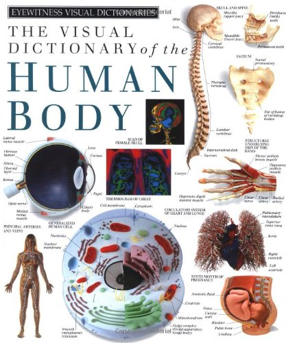 Visual Dictionary of the Human Body   1991 edition cover