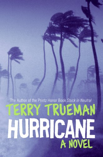 Hurricane A Novel  2008 9780060000189 Front Cover
