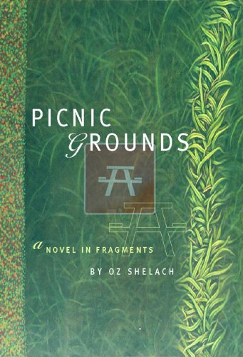 Picnic Grounds A Novel in Fragments  2003 edition cover