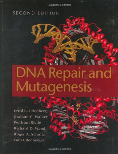DNA Repair and Mutagenesis  2nd 2006 (Revised) 9781555813192 Front Cover