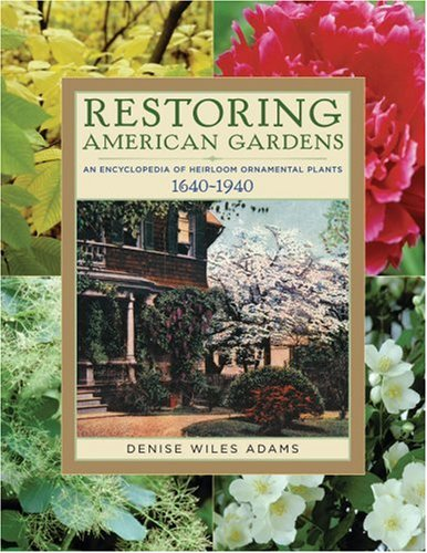 Restoring American Gardens An Encyclopedia of Heirloom Ornamental Plants, 1640-1940  2004 edition cover