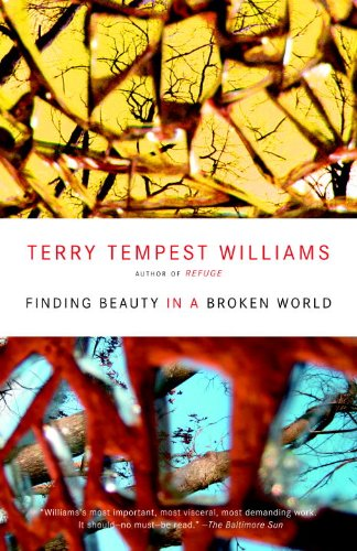 Finding Beauty in a Broken World   2009 edition cover