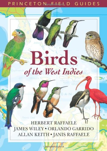 Birds of the West Indies   2004 edition cover