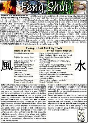 Feng Shui - Medical Pocket Card  0 edition cover