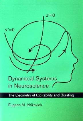 Dynamical Systems in Neuroscience The Geometry of Excitability and Bursting  2010 edition cover