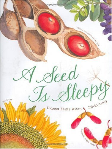 Seed Is Sleepy   2007 edition cover