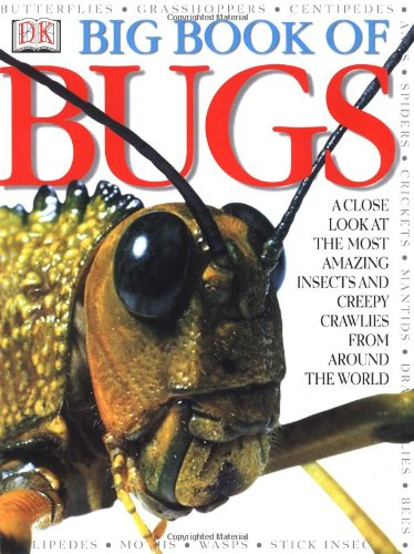 Big Book of Bugs   2000 edition cover