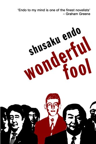 Wonderful Fool  3rd (Revised) edition cover