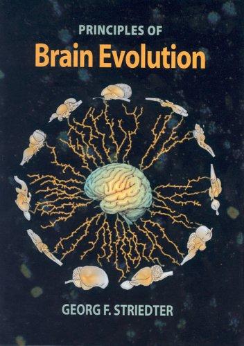 Principles of Brain Evolution   2005 edition cover