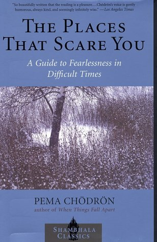 Places That Scare You A Guide to Fearlessness in Difficult Times Reprint  9781570629211 Front Cover