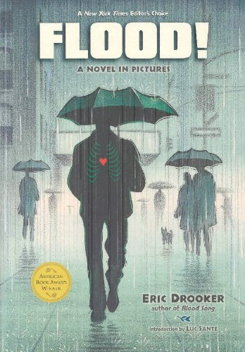 Flood   2002 edition cover