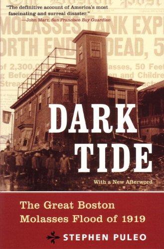 Dark Tide : The Great Boston Molasses Flood of 1919  2004 edition cover