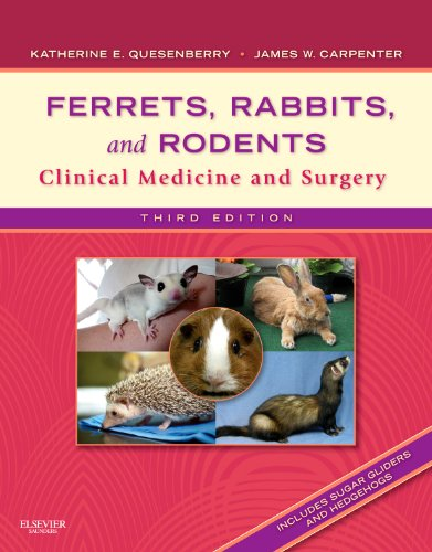 Ferrets, Rabbits, and Rodents Clinical Medicine and Surgery 3rd 2011 edition cover