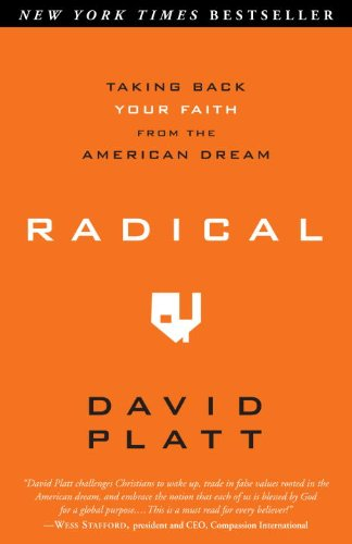 Radical Taking Back Your Faith from the American Dream  2010 9781601422217 Front Cover