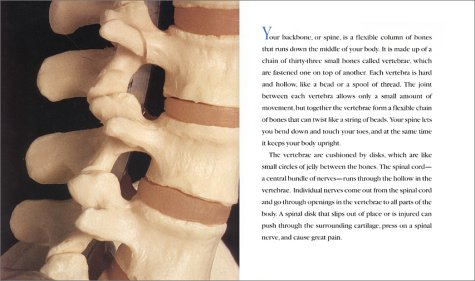 Bones Our Skeletal System  2001 edition cover