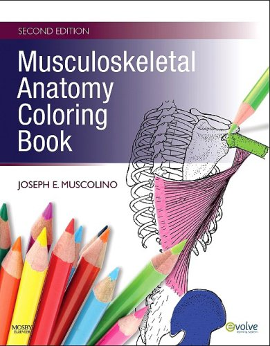 Musculoskeletal Anatomy Coloring Book  2nd edition cover