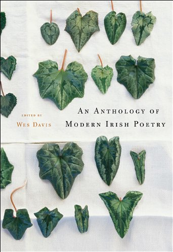 Anthology of Modern Irish Poetry   2010 edition cover