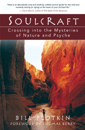 Soulcraft Crossing into the Mysteries of Nature and Psyche  2003 edition cover