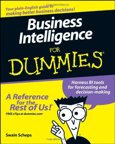 Business Intelligence for Dummies   2008 edition cover