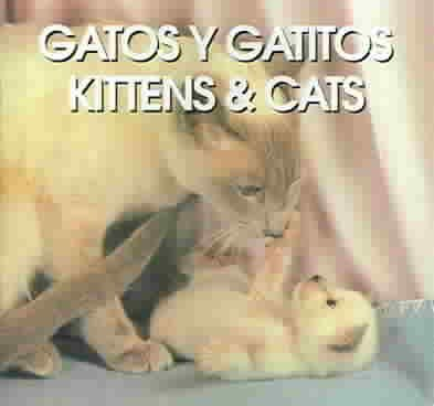 Gatos Y Gatitos/Kittens & Cats:  1994 edition cover