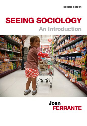 Seeing Sociology An Introduction 2nd 2014 edition cover
