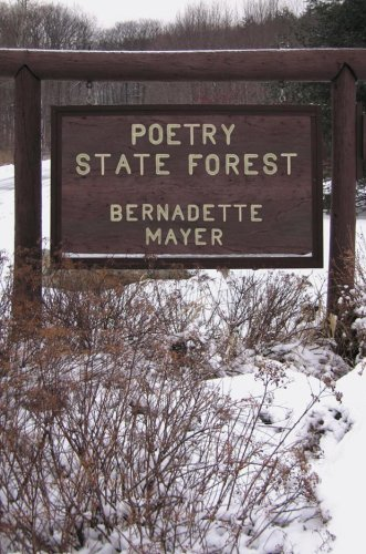 Poetry State Forest   2009 edition cover