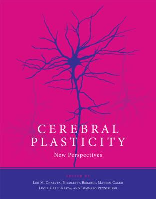 Cerebral Plasticity New Perspectives  2011 9780262015233 Front Cover