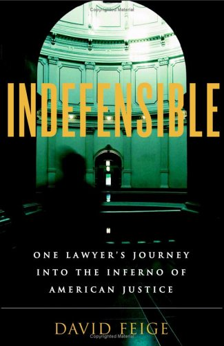 Indefensible One Lawyer's Journey into the Inferno of American Justice  2006 edition cover