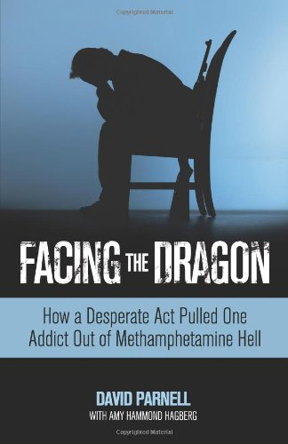 Facing the Dragon How a Desperate Act Pulled One Addict Out of Methamphetamine Hell  2010 edition cover