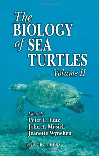 Biology of Sea Turtles   2003 9780849311239 Front Cover