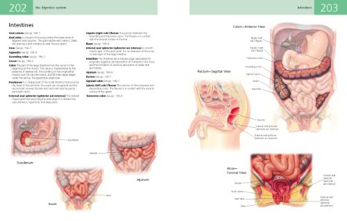 Anatomy Student's Self-Test Visual Dictionary An All-in-One Anatomy Reference and Study Aid  2011 edition cover